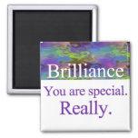 Brilliance Magnet