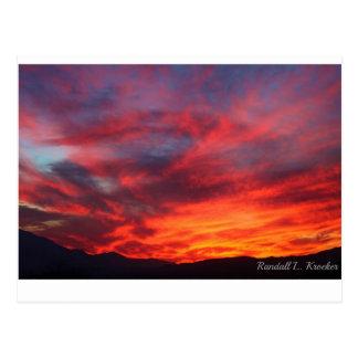Brilliance of a Desert Sunset! Postcard