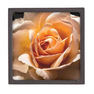 Brilliant Blossom 2 Gift Box