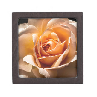 Brilliant Blossom 2 Keepsake Box
