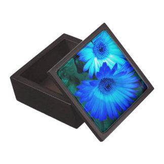 Brilliant Blue Daisies Gift Box