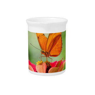 Brilliant Butterfly on Bright Orange Gerber Daisy Beverage Pitcher