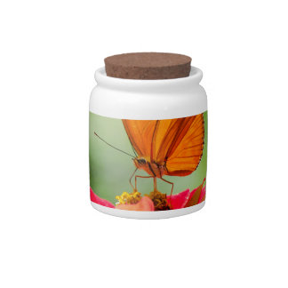 Brilliant Butterfly on Bright Orange Gerber Daisy Candy Jars