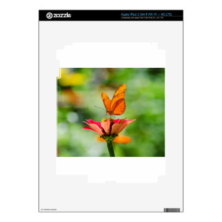 Brilliant Butterfly on Bright Orange Gerber Daisy Decals For iPad 3