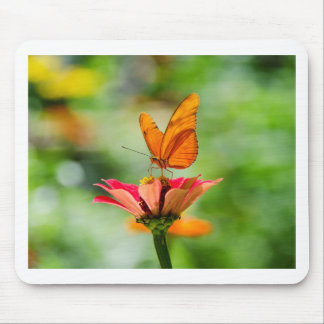 Brilliant Butterfly on Bright Orange Gerber Daisy Mouse Pad