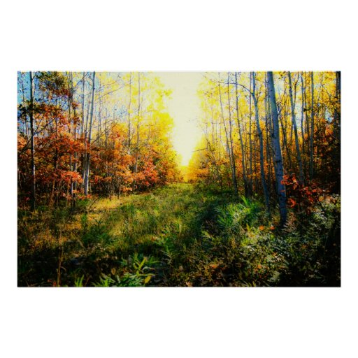 Brilliant colored landscape print