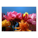 Brilliant Dahlias Mother's Day Greeting Card