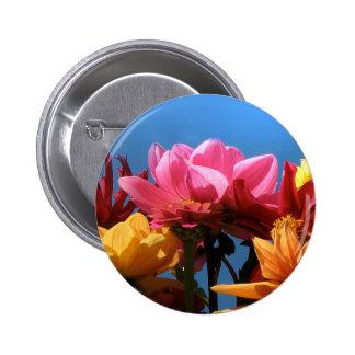 Brilliant Dahlias Pinback Button