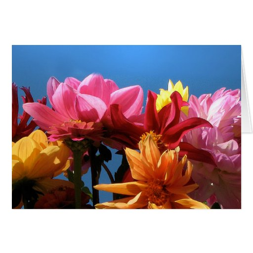 Brilliant Dahlias Thank You Stationery Note Card