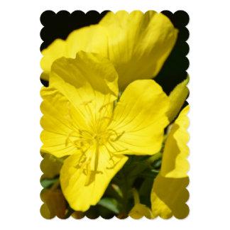 Brilliant Evening Primrose 5x7 Paper Invitation Card