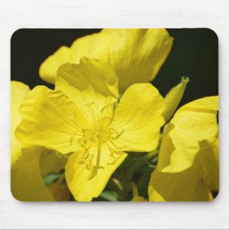 Brilliant Evening Primrose Mouse Pad