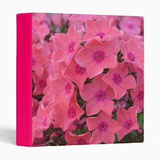 Brilliant Hot Pink Phlox Flowers 3 Ring Binder