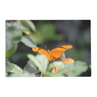 Brilliant Orange Butterfly Laminated Placemat