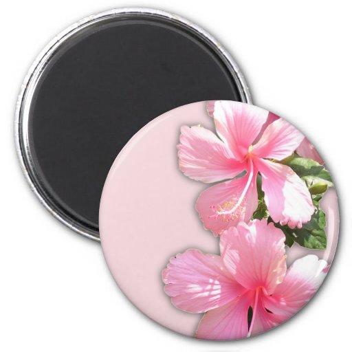 Brilliant Pink Hibiscus Flowers Fridge Magnets
