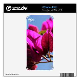 Brilliant Purple Bougainvillea Skin For iPhone 4