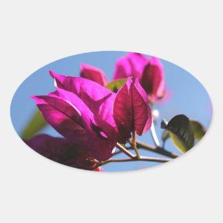 Brilliant Purple Bougainvillea Oval Sticker