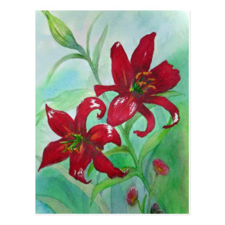 Brilliant Red Fine Art Watercolor Flowers Lindsey Postcard
