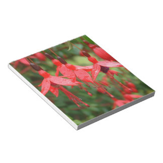 Brilliant red lantern flower Notepad