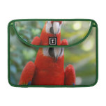 "Brilliant Red Parrot 13"" Macbook Sleeve MacBook Pro Sleeves"