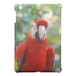 Brilliant Red Parrot iPad Case