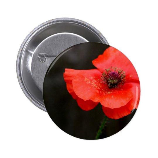 Brilliant Red Poppy Pinback Button