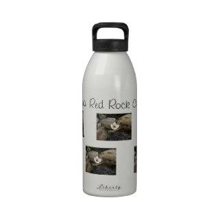 Brilliant Red Rocks; Nevada Souvenir Drinking Bottles