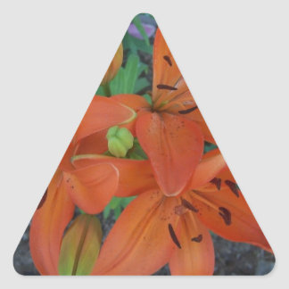 Brilliant Tiger Lily Triangle Sticker