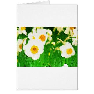 Brilliant White Daffodils Card
