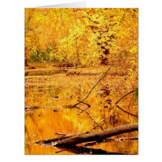 Brilliant yellow reflecting Pond Card