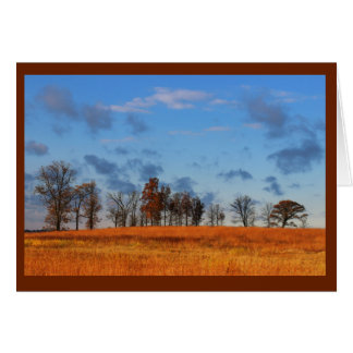Brilliantly Colored Scenery Thinking Of You Card