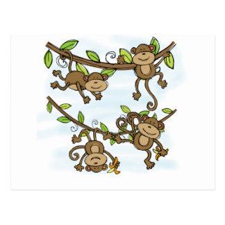 Brillo del mono tarjetas postales