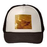Brillo en mí pastor alemán #2 gorras de camionero
