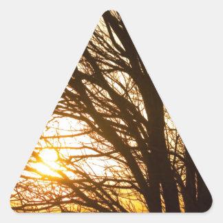 Brillo ligero de oro a través colcomanias de trianguladas