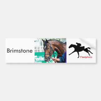 Brimstone Bumper Sticker