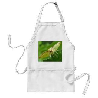 Brimstone Moth Apron