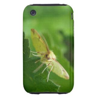 Brimstone Moth iPhone 3 Case