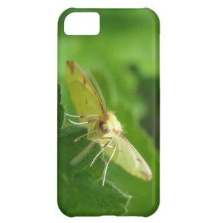 Brimstone Moth iPhone 5 Case