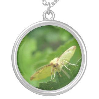 Brimstone Moth Necklace