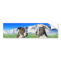 Brindle & Blue Staffordshire & Pit Bull Dogs Bumper Sticker