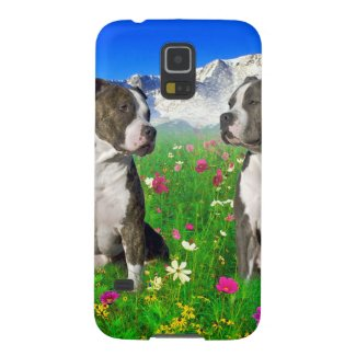 Brindle & Blue Staffordshire & Pit Bull Dogs Galaxy Phone Case