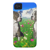 Brindle & Blue Staffordshire & Pit Bull Dogs Case-Mate iPhone 4 Case