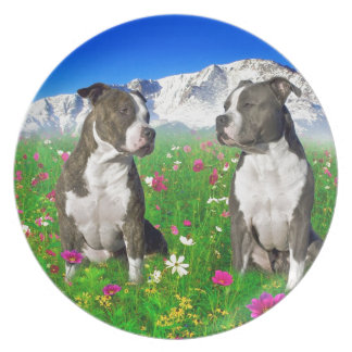 Brindle & Blue Staffordshire & Pit Bull Dogs Melamine Plate
