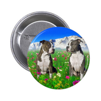 Brindle & Blue Staffordshire & Pit Bull Dogs Pinback Button