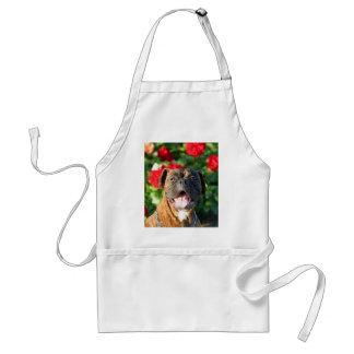 Brindle boxer dog apron