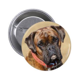 Brindle Boxer Dog Button