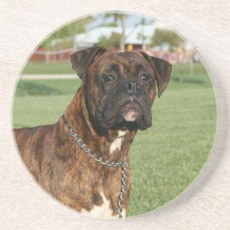 Brindle boxer dog coaster