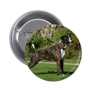 Brindle Boxer Dog Show Stance 2 Inch Round Button