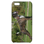 Brindle Boxer Dog Show Stance Case For iPhone 5C