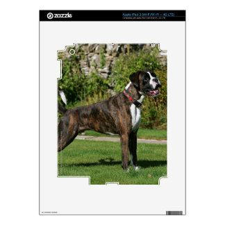 Brindle Boxer Dog Show Stance Decals For iPad 3