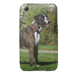 Brindle Boxer Dog Show Stance iPhone 3 Cases